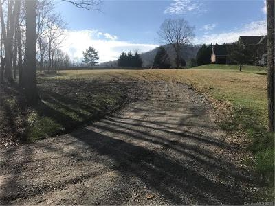 Asheville Residential Lots & Land For Sale: 832 New Haw Creek Road