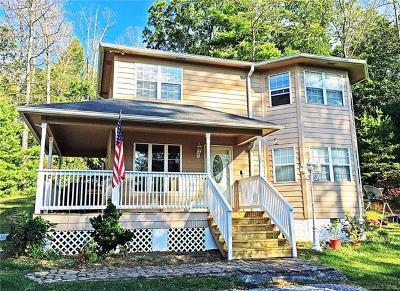 Asheville Single Family Home For Sale: 16 Charter Glen