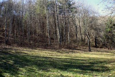 Hot Springs NC Residential Lots & Land For Sale: $25,000