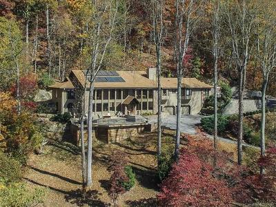 Hendersonville Single Family Home For Sale: 13 Scenic View Drive