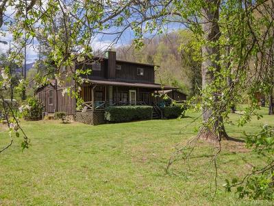Candler Single Family Home For Sale: 2057 Pisgah Highway