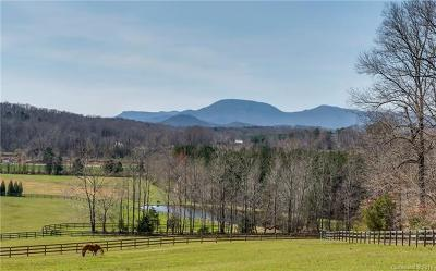 Tryon Residential Lots & Land Under Contract-Show: 133 Wildeman Lane
