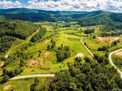 Hendersonville Residential Lots & Land For Sale: 73 +/- Acres Pleasant Grove Road