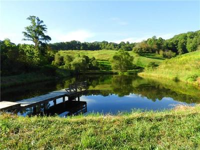 Single Family Home For Sale: 1007 Upper Thomas Branch Road