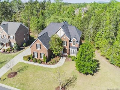 Single Family Home For Sale: 17023 Turtle Point Road