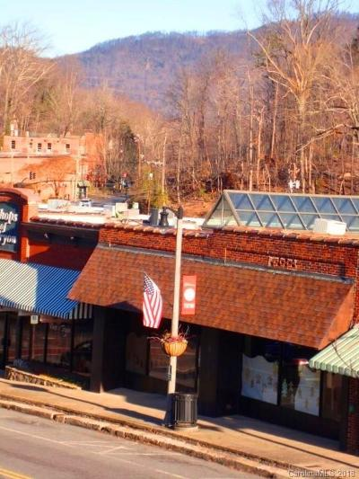 Tryon Commercial For Sale: 104 Trade Street N
