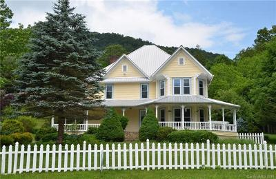 Single Family Home For Sale: 32 Hortons Creek Road