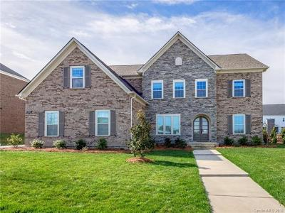 Fort Mill Single Family Home For Sale: 2055 Brownwich Drive