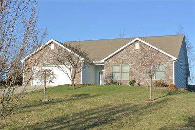 Candler Single Family Home For Sale: 11 Bombay Court