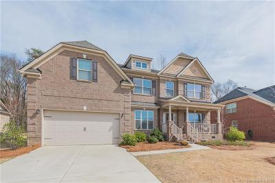 Fort Mill Single Family Home For Sale: 619 Sugarberry Court