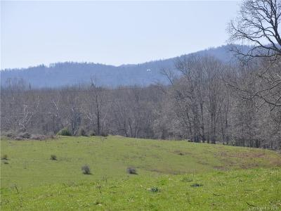Hendersonville NC Residential Lots & Land For Sale: $4,000,000