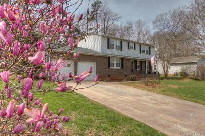 Gastonia Single Family Home For Sale: 517 Shadow View Drive
