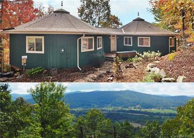 Pisgah Forest Single Family Home For Sale: 770 Gardner Lane