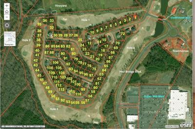 Residential Lots & Land For Sale: 7755 Village Parkway #2