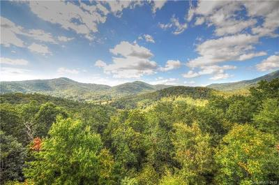 Asheville Single Family Home For Sale: 316 Mountain Laurel