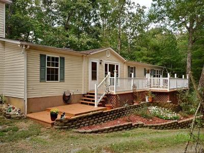 Saluda Single Family Home For Sale: 132 Camp Creek Road