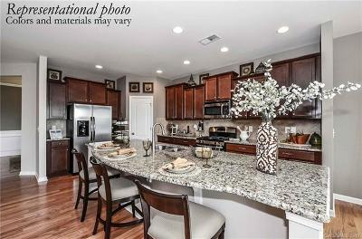 Clover, Lake Wylie Single Family Home For Sale: 5006 Warbler Way #148