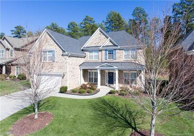 Waxhaw Single Family Home For Sale: 2801 Twinberry Lane