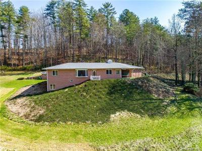 Mars Hill NC Single Family Home For Sale: $690,000