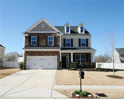 Fort Mill Single Family Home For Sale: 736 Trailhead Lane
