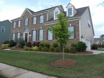 Huntersville Single Family Home For Sale: 16241 Grassy Creek Drive #31