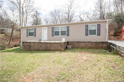 Saluda Single Family Home For Sale: 350 & 356 Gordon Road #1 &