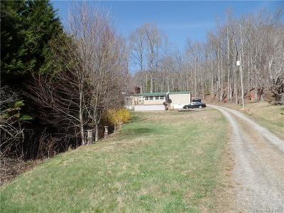 Black Mountain Single Family Home For Sale: 93 S Chestnut Hill Road