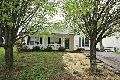 Concord Single Family Home For Sale: 793 Sir Raleigh Drive