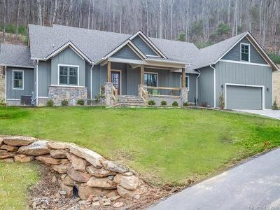 Asheville Single Family Home For Sale: 7 Woodland Aster Way