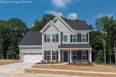 Huntersville Single Family Home For Sale: 10024 Andres Duany Drive #349