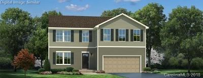 Concord Single Family Home For Sale: 1087 Tangle Ridge Drive SE #7