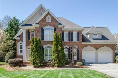 Charlotte Single Family Home For Sale: 10937 Tradition View Drive