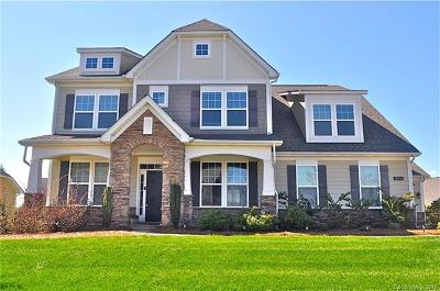 Huntersville Single Family Home For Sale: 15141 Skypark Drive