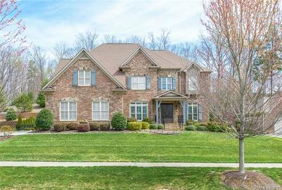 Huntersville Single Family Home For Sale: 13048 Long Common Parkway