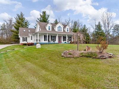 Weaverville Single Family Home For Sale: 19 Penny Lane