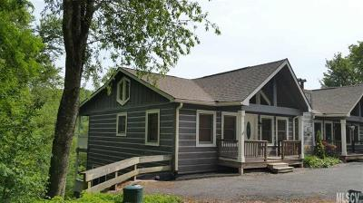 Watauga County Single Family Home For Sale: 191-1 Flat Top Road #1