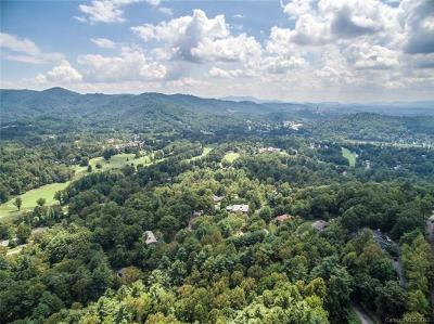 Asheville Residential Lots & Land Under Contract-Show: 38.13 Acres Robinhood Road