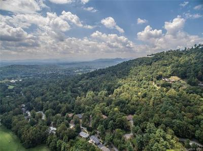 Asheville Residential Lots & Land Under Contract-Show: 37.71 Acres Robinhood Road