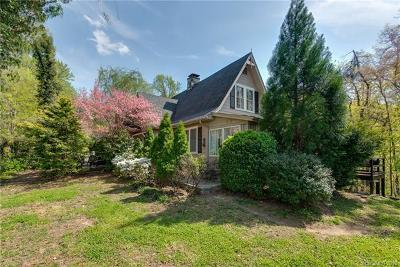 Tryon Single Family Home For Sale: 1040 Hogback Mountain Road