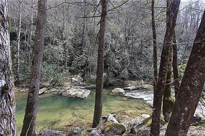Bat Cave, Gerton Residential Lots & Land Under Contract-Show: Hardison Falls Trail