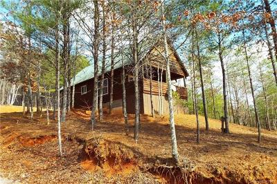 Bat Cave, Black Mountain, Chimney Rock, Lake Lure, Mill Spring, Rutherfordton, Union Mills, Bostic, Columbus, Tryon, Saluda Single Family Home For Sale: 1446 McGuinn Road