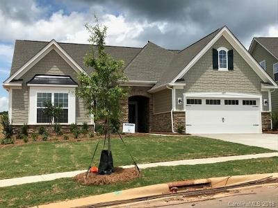 Lake Wylie Single Family Home For Sale: 4019 Home Grown Way #74