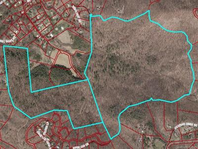 Asheville Residential Lots & Land For Sale: 9999 Rice Branch Road