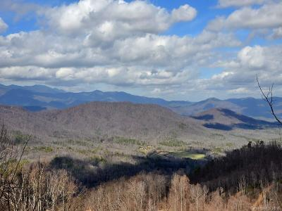 Black Mountain NC Residential Lots & Land For Sale: $3,700,000