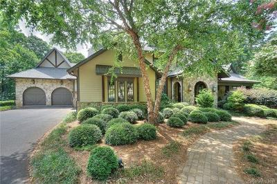 Mecklenburg County Single Family Home For Sale: 9716 Sweetleaf Place