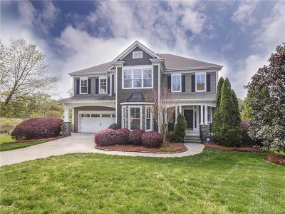 Huntersville Single Family Home For Sale: 14702 Elmcrest Court