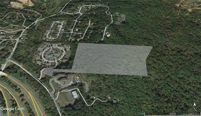 Asheville NC Residential Lots & Land For Sale: $169,000