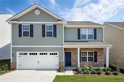 Fort Mill Single Family Home For Sale: 676 Cape Fear Street
