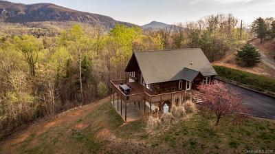 Lake Lure Single Family Home For Sale: 173 Mistletoe Park