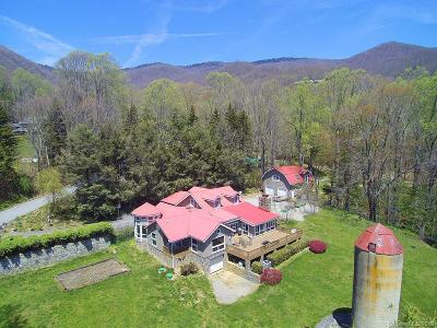 Waynesville Single Family Home For Sale: 950 Walker Road